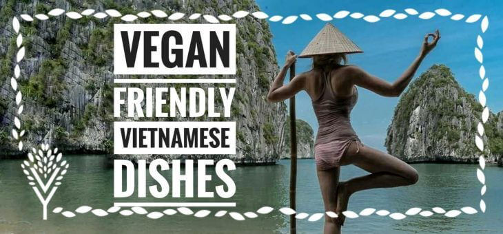 10 Authentic Vietnamese Vegan Dishes [Free Recipes & Translation Sheet]