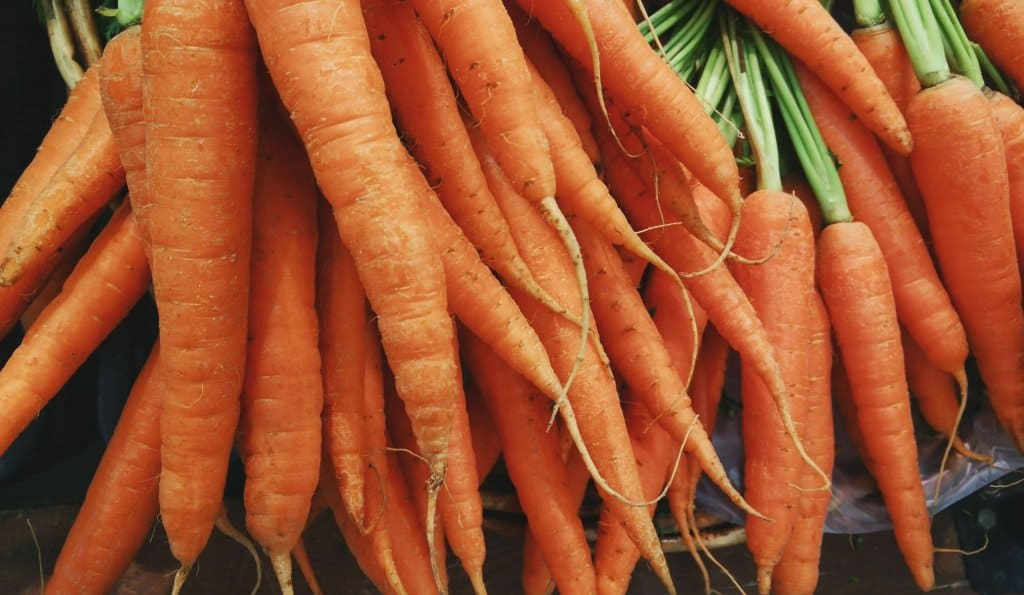 Vitamins and Minerals That Will Improve Your Yoga Skills carrots
